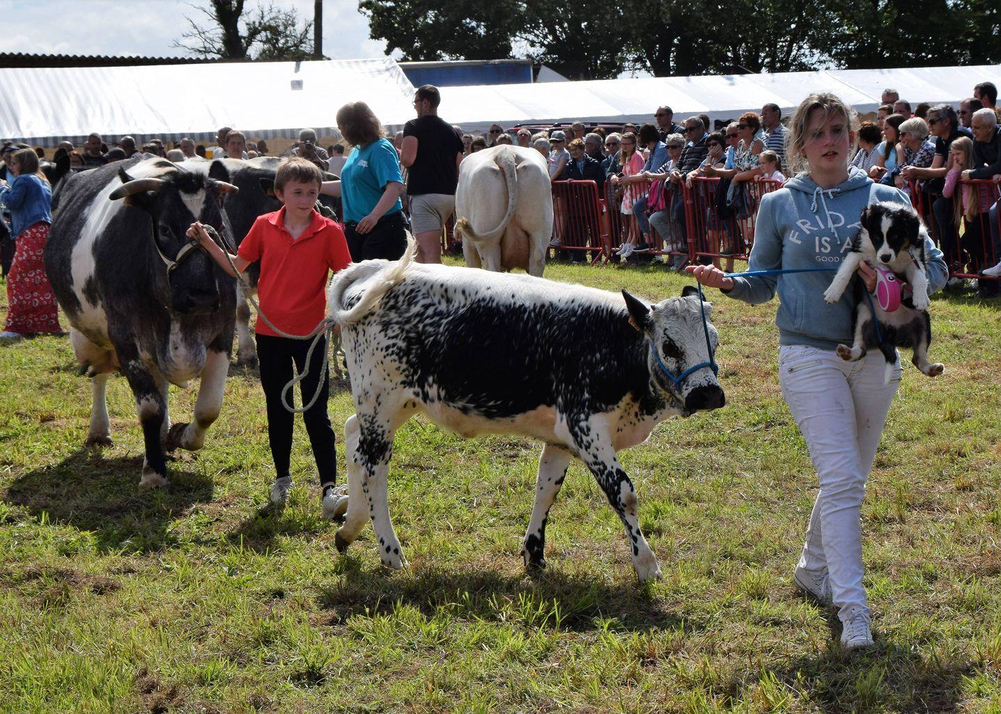 Comice agricole 06